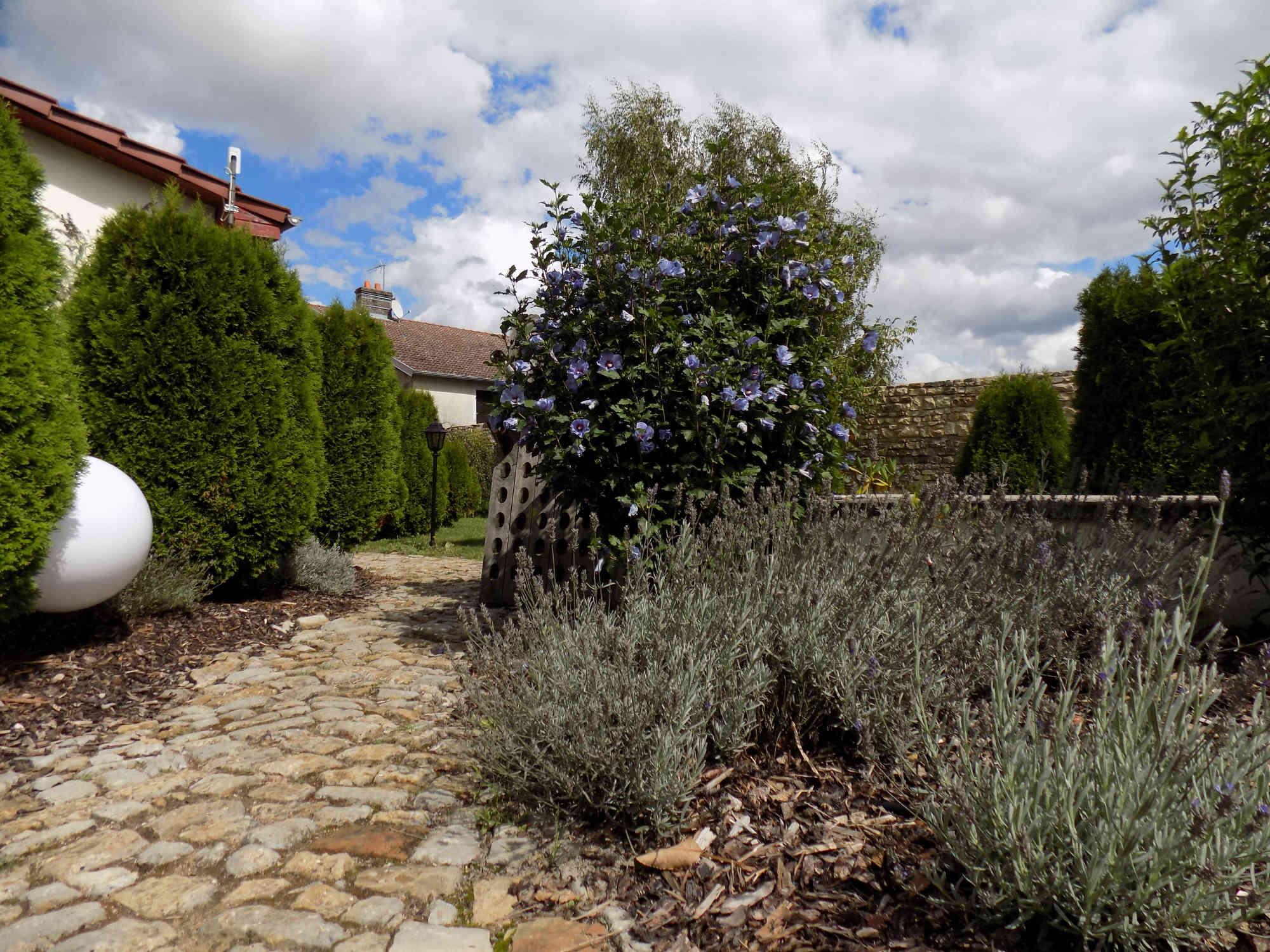 jgite avec spa nordique, jardin, gite pour deux, gite a Vitrey sur Mance, sejour romantique